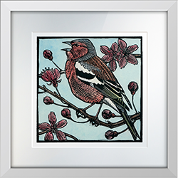 Chaffinch in Song Print