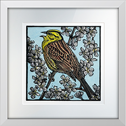 Yellowhammer in Song Print